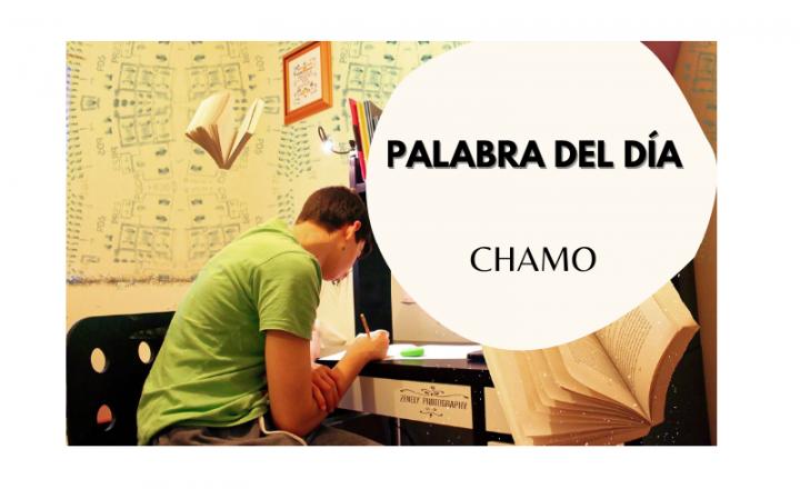 La palabra del día: Chamo - Easy Español