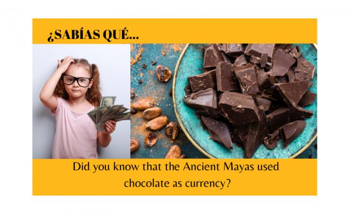 ¿Sabías que los Mayas usaban chocolate como moneda? - Easy Español