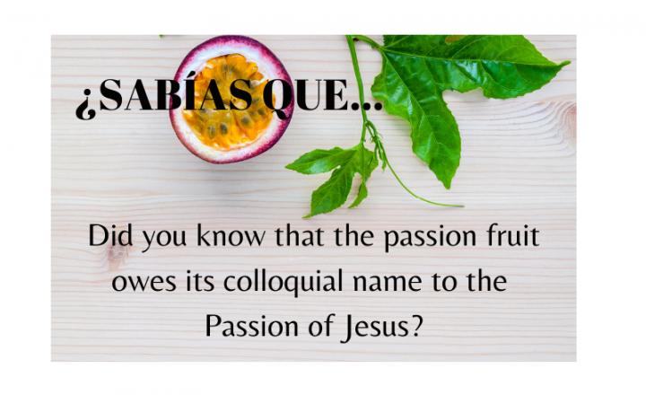 ¿Sabías que el nombre de la fruta de la pasión se debe a la Pasión de Cristo? - Easy Español