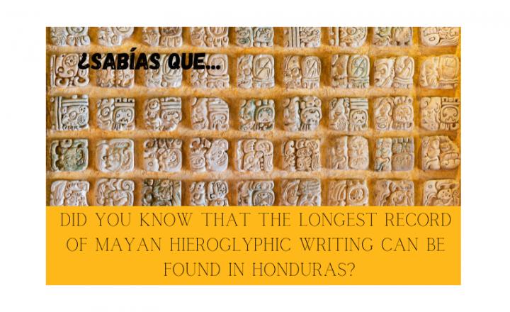¿Sabías que el jeroglífico maya más extenso se encuentra en Honduras? - Easy Español