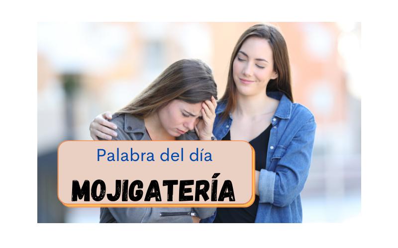 La palabra del día: Mojigatería - Easy Español