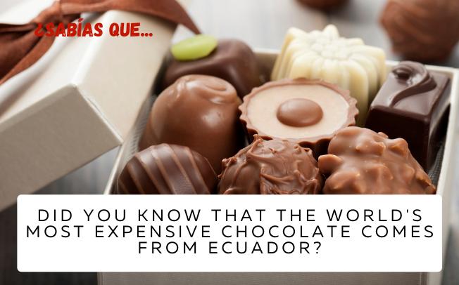 ¿Sabías que el chocolate más caro del mundo es de Ecuador? - Easy Español