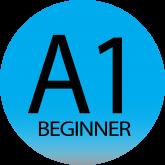 A1 BASIC